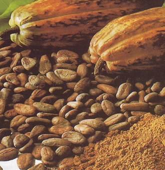Готовим какао